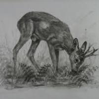 """1er """"Salon des Artistes animaliers, de la Chasse et de la Nature"""". #nature #chasse #bruxelles"""