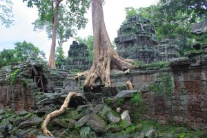 angkor-cecile-clocheret