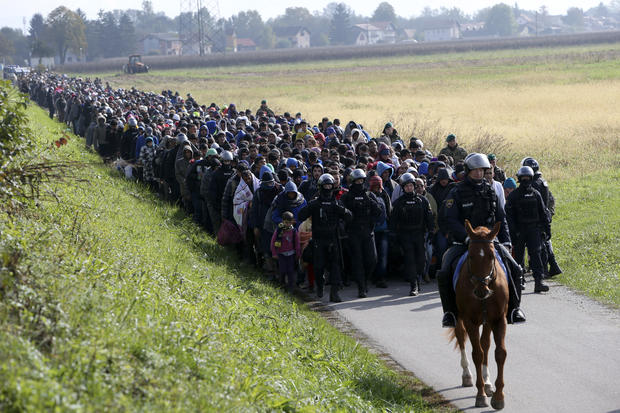 A mounted policeman leads a group of migrants near Dobova