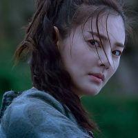 "Hong-Kong au 37ème ""Brussels Fantastic Film Festival"", du 09 au 21 Avril"