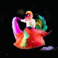 """""""Au Royaume des Touloulous"""" au """"Musée du Carnaval et du Masque"""", jusqu'au 21 Avril"""