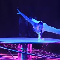"""15e """"Festival du Cirque"""", à Namur, du 26 Octobre au 11 Novembre / Parade, ce 23/10"""