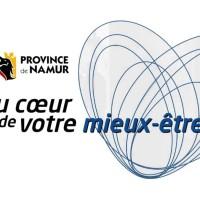 Quel est le futur des cinq Provinces wallonnes ?