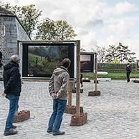 """Soirée de Clôture du """"FINN"""", à Jambes, et Expositions de Photos, à la Citadelle, jusq'au 24 Octobre"""